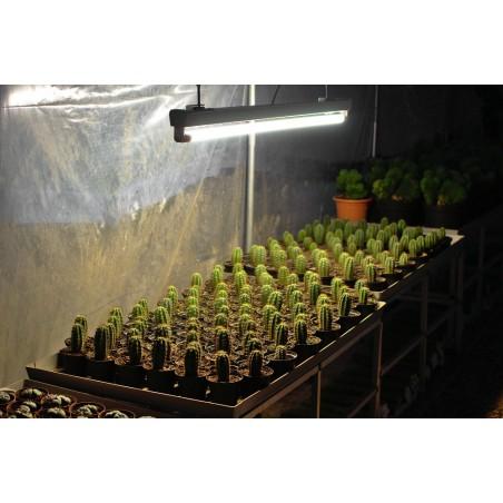 LED Pflanzenlampe 90cm, Leuchtstoffröhre